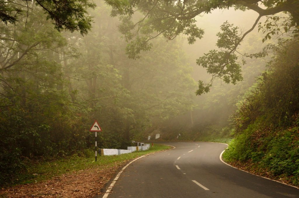 BR Hills, best road trips in South India, best road trip from Bangalore