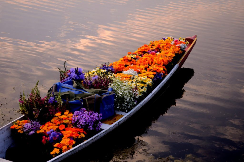 Kashmir-flowers, famous festivals of india, regional festivals of india, india the land of festivals