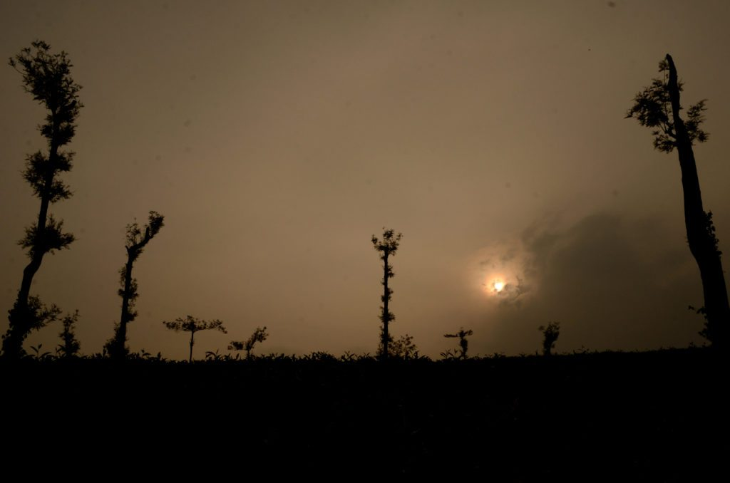 Sunset Coorg