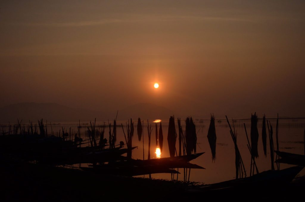 Orissa, Chilka lake, sunrise