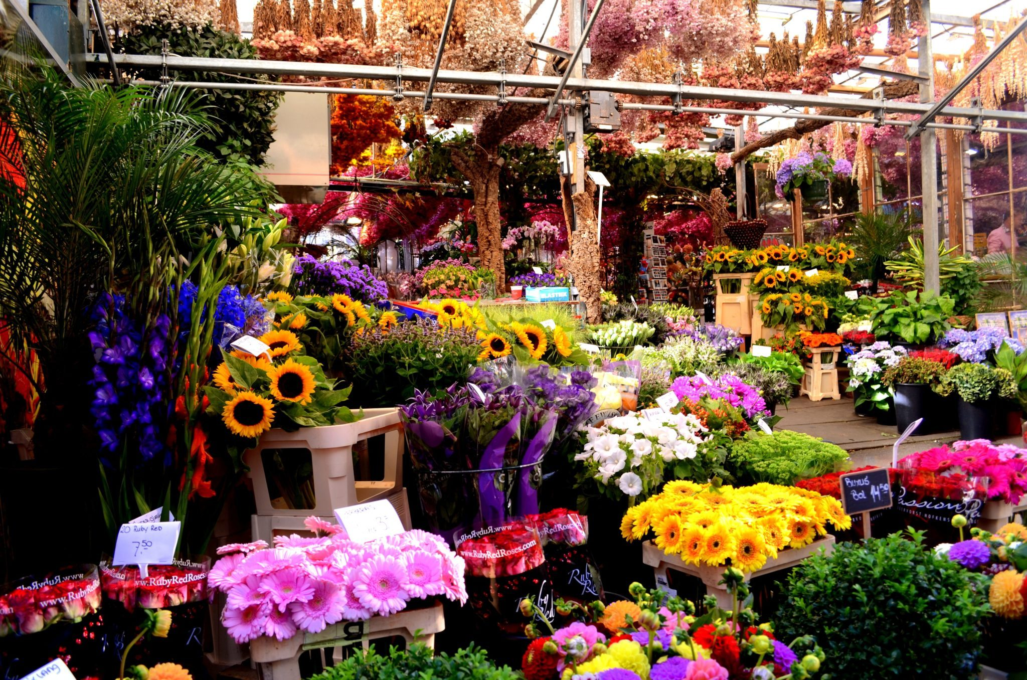Beautiful flower gardens of the world - Five Favourite Markets Around The World