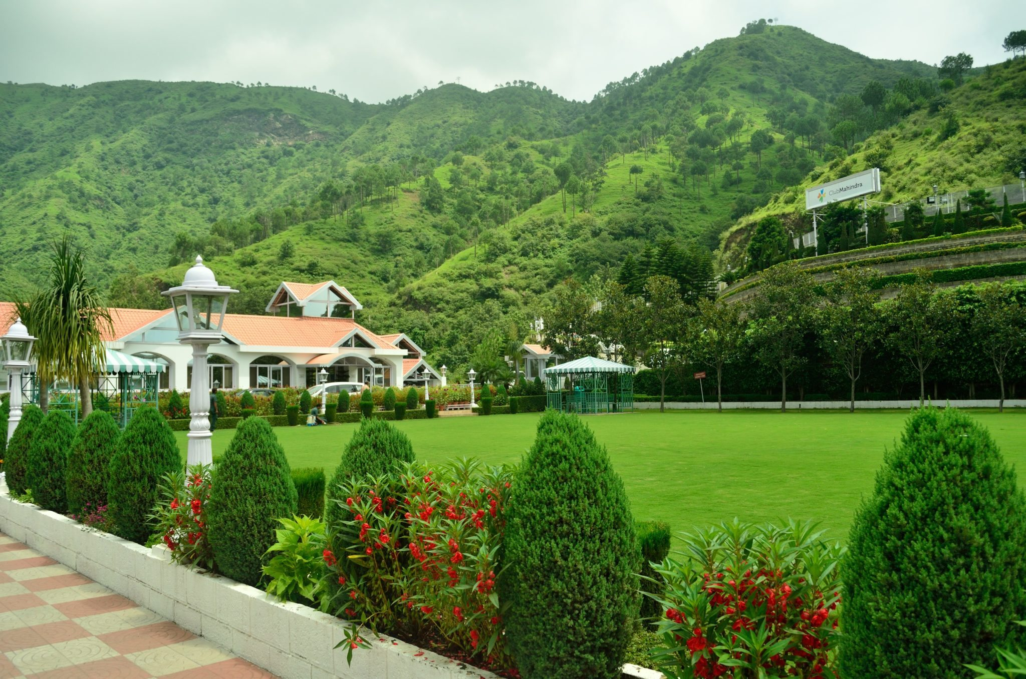 Immerse In Nature At These Places To Visit In Solan