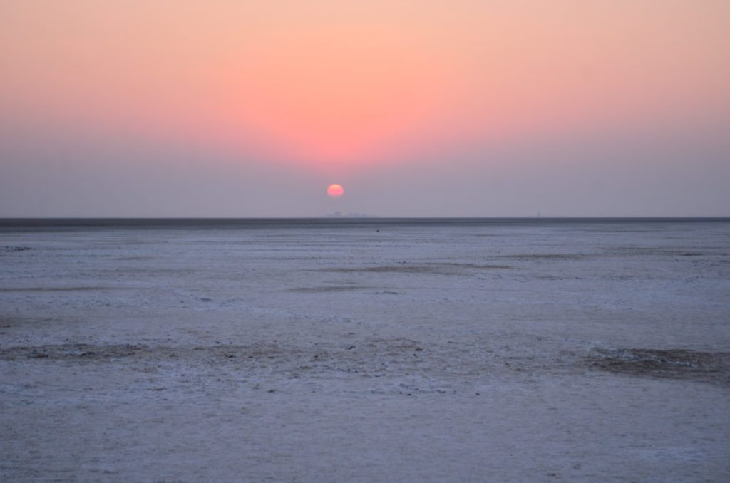 White Rann, Rann of Kutch, sunrise