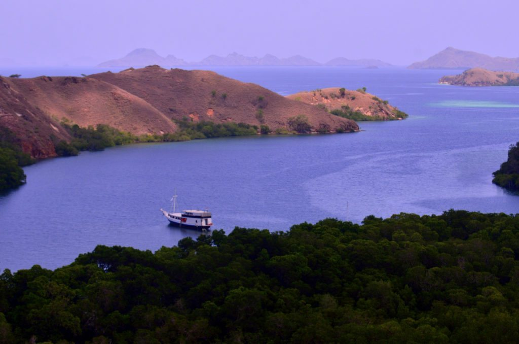 Rinca island - view from the top