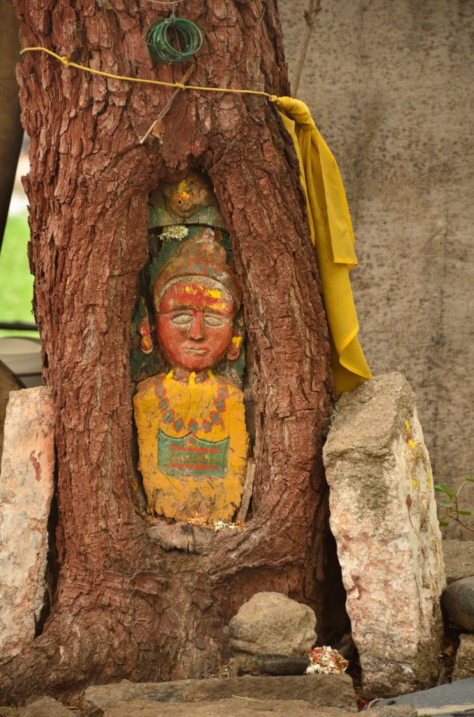 A deity in a tree in hampi