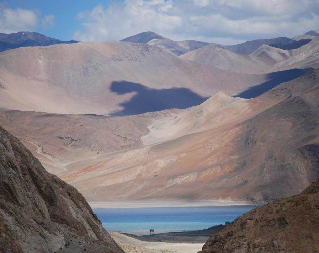 camps at Pangong lake, Pangong Tso, lakes of Ladakh, things to do in Ladakh