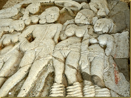 sannathi-ashoka